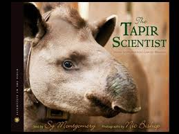 tapir scientist