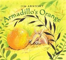 armadillos orange