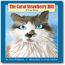 cat of strawberry hill