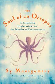 soul of octopus