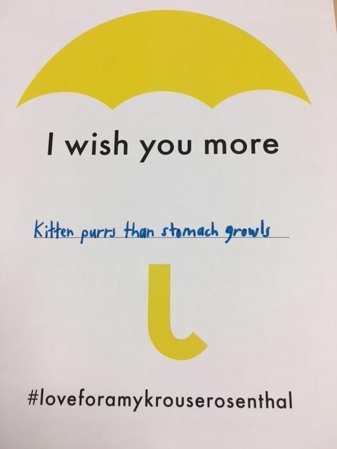 wish kittens