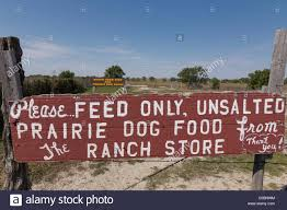prairie dog feed sign